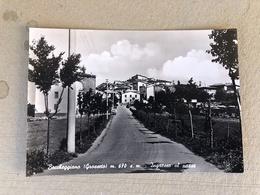 BOCCHEGGIANO (GROSSETO) INGRESSO AL PAESE  1967 - Grosseto