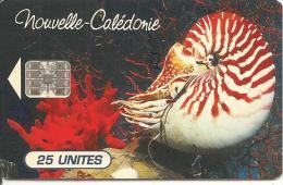 CARTE PUCE-NOUVELLE-CALEDONIE-25U-NC 38A-NAUTILE-Sans N°-UTILISE-TBE - New Caledonia