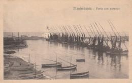 MANFREDONIA - PORTO CON PARANZE - Manfredonia