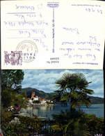 620449,Brissago Lago Maggiore Palme - TI Tessin