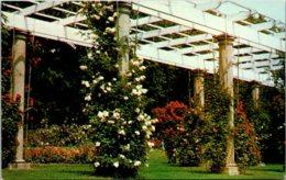 Indiana Fort Wayne Lakeside Park Lakeside Rose Gardens - Fort Wayne
