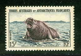Éléphant De Mer; Archipel Des Kerguelen. Timbre Scott Stamp # 7.  T.A.A.F. (2287) - Terres Australes Et Antarctiques Françaises (TAAF)
