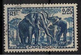 CAMEROUN      N° YVERT  :    186   OBLITERE     ( OB   03/62  ) - Cameroun (1915-1959)
