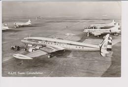 Vintage Pc KLM K.L.M Fleet Covairs & Constellation Aircraft @ Schiphol Amsterdam Airport - 1919-1938: Between Wars