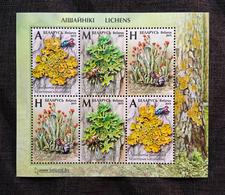Belarus 2019 - Lichens, S/s MNH. Flora Licheni Lichen Korstmos Mushrooms Korstmossen Bielorussia/Biélorussie/Wit-Rusland - Belarus