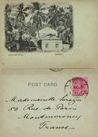 India, BOMBAY, Girgaum Road, Palm Trees (1901) Court Card - India