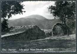 LIONI (AV) - Paesaggio Rurale - Cartolina Viaggiata Anno 1970, Come Da Scansione. - Avellino