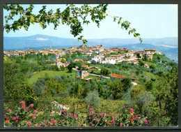 LAPIO (AV) - Panorama - Cartolina, Come Da Scansione. - Avellino