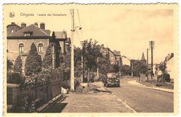 OTTIGNIES   L' Avenue Des Combattants - Ottignies-Louvain-la-Neuve