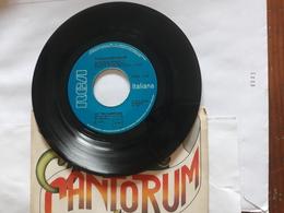 Schola Cantorum  -  RCA  .  Le Tre Campane  -    Anno 1975. - Soul - R&B