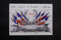 MILITARIA - Document Sur La Radieuse Victoire De1945 - Rhin Danube - L 33492 - Documents