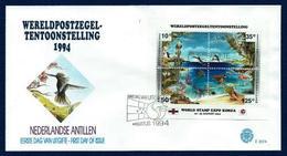 Antillas Holandesas Nº HB-41 (sobre Primer Día) - Antillas Holandesas
