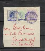 1896.- BIG PART OF LETTER BUREAU IN LEVANT. FRAGMENT YV 1/3 SURCHAGES VIOLET. PERIOR VALID OF FRANKANTUR 16/3 TO 9/5/96 - Levant (Turquía)