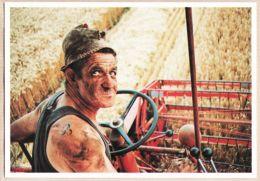 X28007 GAUDREVILLE Août 1991 Lucien GOULU Moissonne Blé Sur MASSEY-FERGUSON 400 Cliché Michel LAURENT N°9 Cpagr Ferguss - France