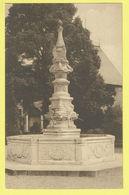 * Gaasbeek - Gaesbeek (Lennik - Vlaams Brabant) * (Nels) Kasteel Van Gaesbeek Bij Brussel, Chateau, Fontaine Beaune - Lennik