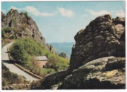 Environs De Lamalou Les Bains - Route Forestière De Lespinouse - (Hérault, France) - Lamalou Les Bains