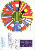 Irlande. Carte Maximum. Europa 1960 - Cartes-maximum