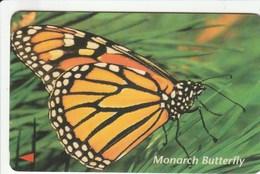 Vietnam - Monarch Butterfly - 6MVSD - Vietnam