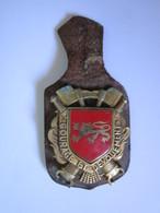 Insigne  SAPEURS POMPIERS De LAVAL (Sapeur Pompier) - Firemen