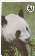 Malawi (Fake) - Panda - Malawi