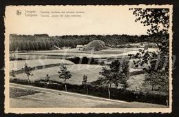 Postkaart / CPA / Tongeren / Tongres / Tumulus / Graven Der Ouder Romeinen / Ed. Ern. Thill / Unused - Tongeren