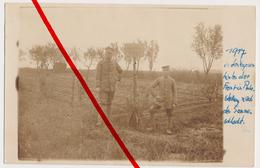 Original Foto - RIR 101 - Garten Der 2. MGK - 1917 - Ruhestellung In Den Vogesen Nach Somme-Schlacht - Vosges - Frankrijk