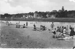 58 - LA CHARITE Sur LOIRE : La Plage ( Bonne Animation ) - CPSM Dentelée Noir Blanc Format CPA 1954 - Nièvre - La Charité Sur Loire