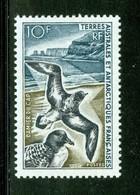 Oiseaux / Bird : Damier Du Cap. Timbre Scott Stamp # 26.  T.A.A.F. (2290) - Terres Australes Et Antarctiques Françaises (TAAF)