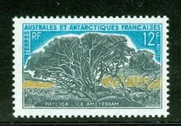 Arbre / Tree : Phylica, Îles Amsterdam. Timbre Scott Stamp # 27.  T.A.A.F. (2291) - Terres Australes Et Antarctiques Françaises (TAAF)