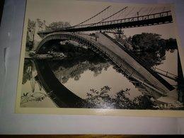 L'ISLE Sur TARN - Construction Du Pont  (photo 18 Cm * 24 Cm) - Lisle Sur Tarn
