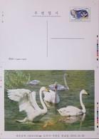 O) 2011 KOREA, PROOF. BIRDS - SPECTACLED OWL -PULSATRIX PERSPICILLATA, WHOOPER SWAN - CYGNUS CYGNUS, POSTAL STATIONERY, - Korea (...-1945)