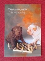 POSTAL POST CARD AJEDREZ CHESS Échecs SCHACH XADREZ PERROS JUGANDO PARTIDA DOGS PLAYING GAME CHIENS JOUANT CARTE POSTALE - Postales