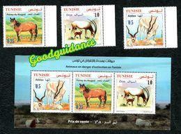 2019- Tunisie - Animaux En Danger D'extinction En Tunisie - Faune- Bloc Perforé + Emission Complete 3v.MNH** - Briefmarken