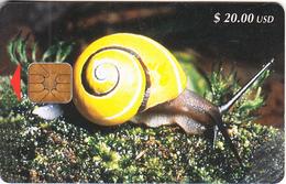 CUBA - Snail, Tirage 40000, Used - Ohne Zuordnung
