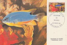 Carte  Maximum  1er Jour   NOUVELLE CALEDONIE   Aquarium  De  NOUMEA   1988 - Tarjetas – Máxima