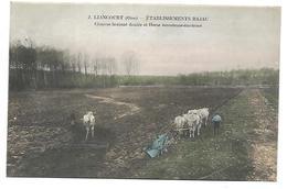 LIANCOURT - Etablissement BAJAC - Charrue Brabant Double Et Herse écrouteuse-émoteuse - Liancourt