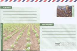 Cuba 2018 Postal Stationary Envelopes National Service, Tobacco Plants, Farmers, Pinar Del Rio N9 NEW - Agricultura