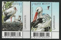 """BIELORRUSIA /BELARÚS /WEISSRUSSLAND - EUROPA 2019 -NATIONAL BIRDS.-""""AVES -BIRDS -VÖGEL-OISEAUX""""- SERIE CH- CB - 2019"""