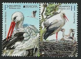 """BIELORRUSIA /BELARÚS /WEISSRUSSLAND - EUROPA 2019 -NATIONAL BIRDS.-""""AVES -BIRDS -VÖGEL-OISEAUX""""- SERIE A De BLOCK - 2019"""
