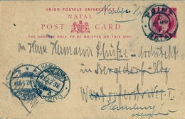 1902 NATAL , TARJETA ENTERO POSTAL CIRCULADA A BERGEDORF , REDIRIGIDA A HAMBURGO , LLEGADAS. - África Del Sur (...-1961)