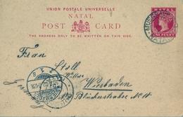1902 NATAL , TARJETA ENTERO POSTAL CIRCULADA , MUSGRAVE - WIESBADEN , TRÁNSITO DURBAN - África Del Sur (...-1961)