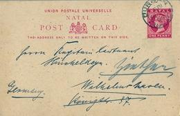 1905 NATAL , TARJETA ENTERO POSTAL CIRCULADA , DURBAN - ALEMANIA - África Del Sur (...-1961)