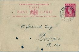 1898 NATAL , TARJETA ENTERO POSTAL CIRCULADA , DURBAN - PRETORIA , LLEGADA - África Del Sur (...-1961)