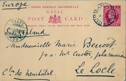 1899 NATAL , TARJETA ENTERO POSTAL CIRCULADA , DURBAN - LOCLE ( SUIZA ) , LLEGADA - África Del Sur (...-1961)