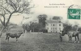 """/ CPA FRANCE 80 """"La Croix Au Bailly, Bethencourt Sur Mer"""" / VACHE / CHEVAL - France"""