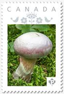 "WHITE MUSHROOM = ""P""- Rate = VERTICAL Picture Postage Canada 2019 [p19-06s05] - Mushrooms"