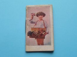 1927 Petit Calendrier / Agenda ( Edit. ? > Zie/voir Photo Pour/voor Detail ) Complet ! - Calendriers
