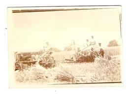 PHOTO ANCIENNE ORIGINALE - AGRICULTURE TRACTEUR MOISSONNEUSE BATTEUSE TRAVAUX Des CHAMPS - Métiers