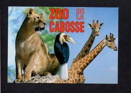 14 Jurques / ZOO De La Cabosse / Lionne,girafes,oiseau - France