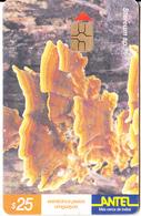 URUGUAY - Stereum Sp.(159a), 01/01, Used - Uruguay